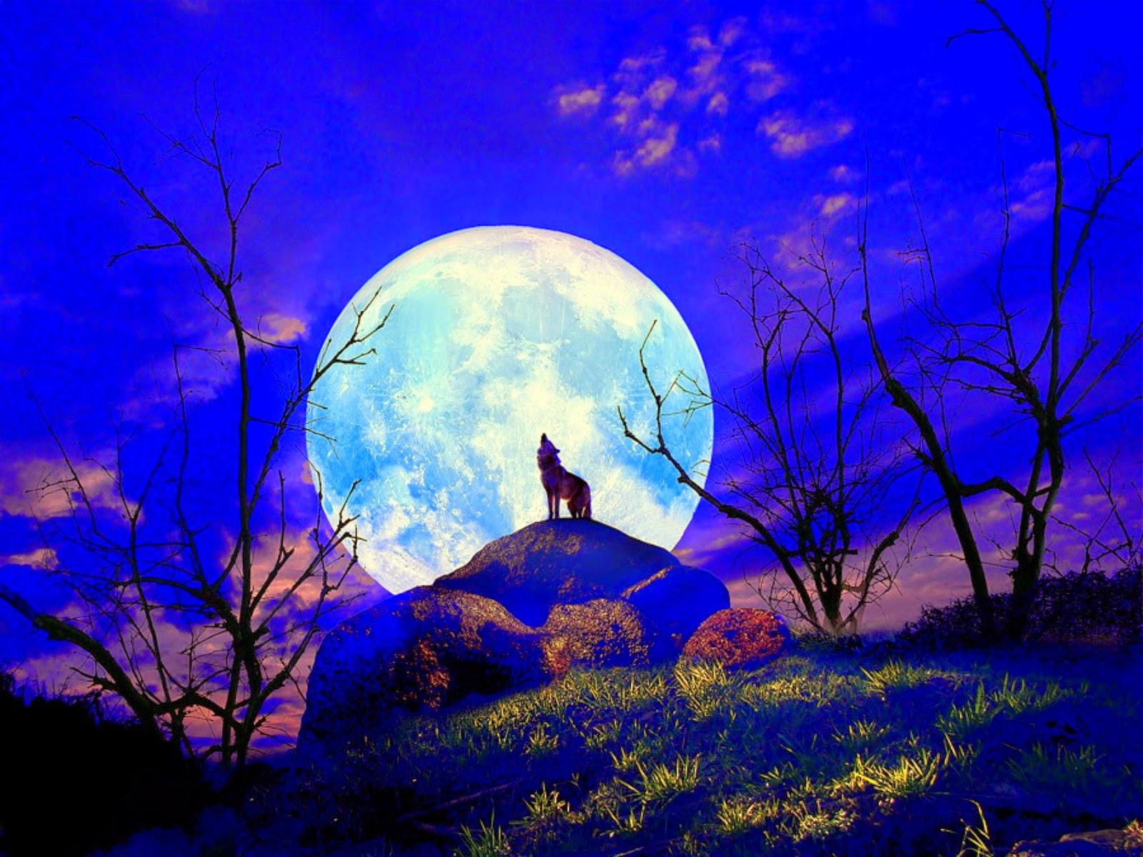 Imagem de um Lobo uivando para uma Lua Cheia na floresta
